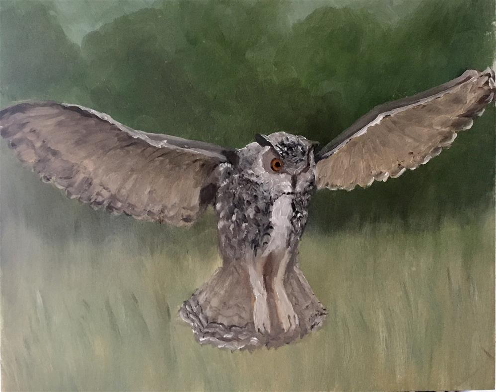 """Owl In Flight"" original fine art by Carole Chalmers"