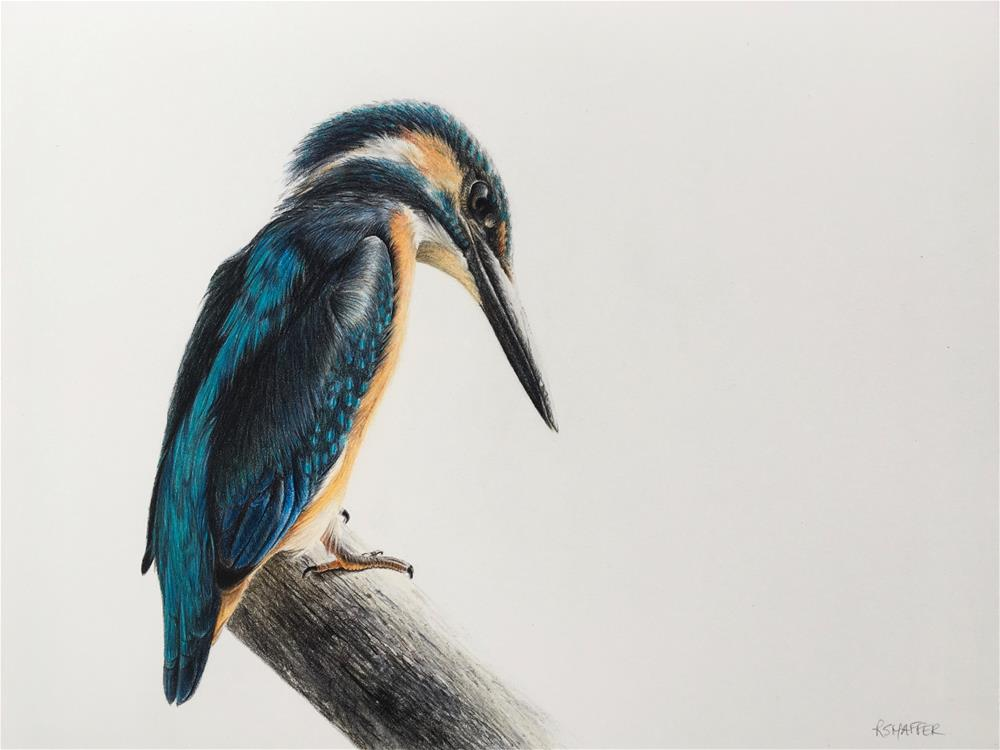 """Fisherking (Kingfisher)"" original fine art by Renay Shaffer"
