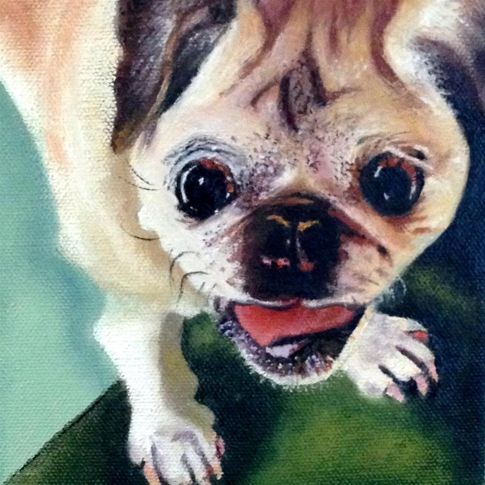 """Oscar Wilde the Pug"" original fine art by Debbie Yacenda"