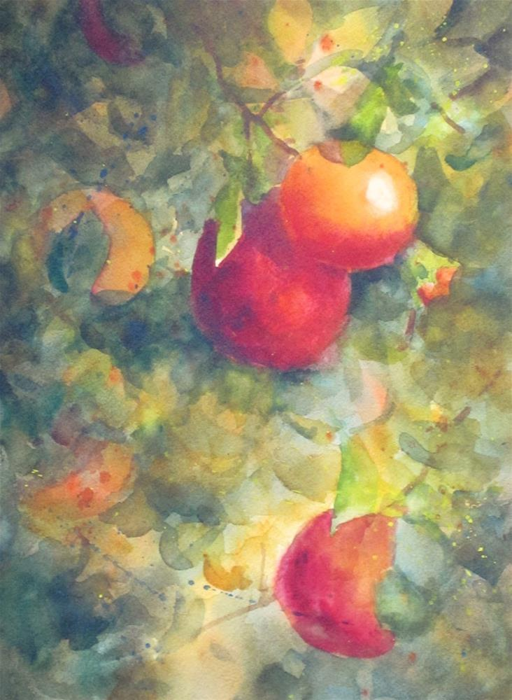 """""""Pomegranates in the Sun"""" original fine art by Pat Fiorello"""