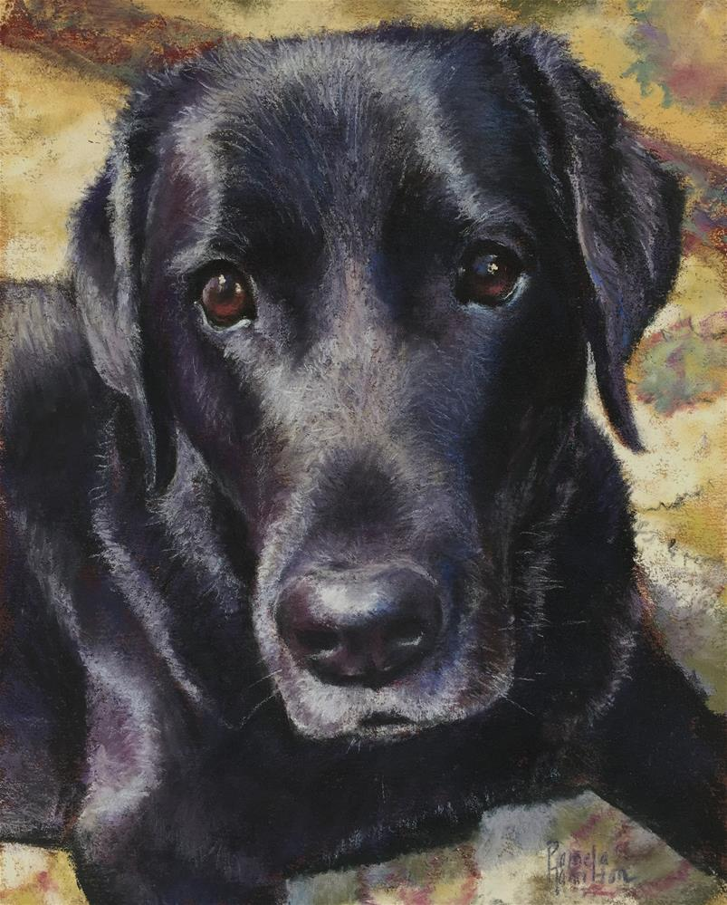 """Riley 2nd"" original fine art by Pamela Hamilton"