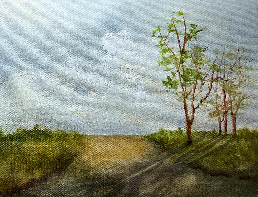 """Shadows on the dirt road"" original fine art by Betty Argiros"