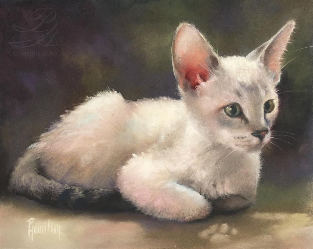 """""""Downy Soft"""" original fine art by Pamela Hamilton"""