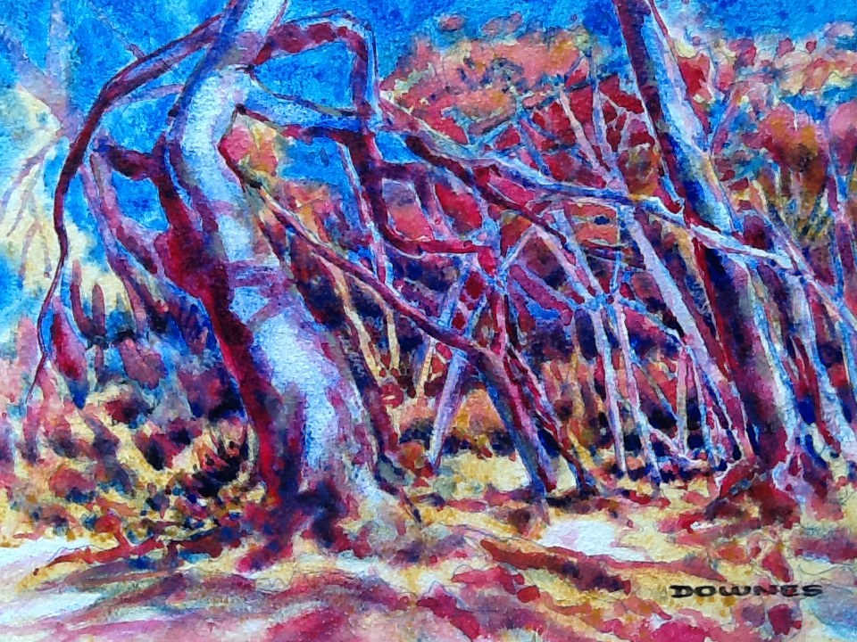 """013 THE BUSH 2"" original fine art by Trevor Downes"