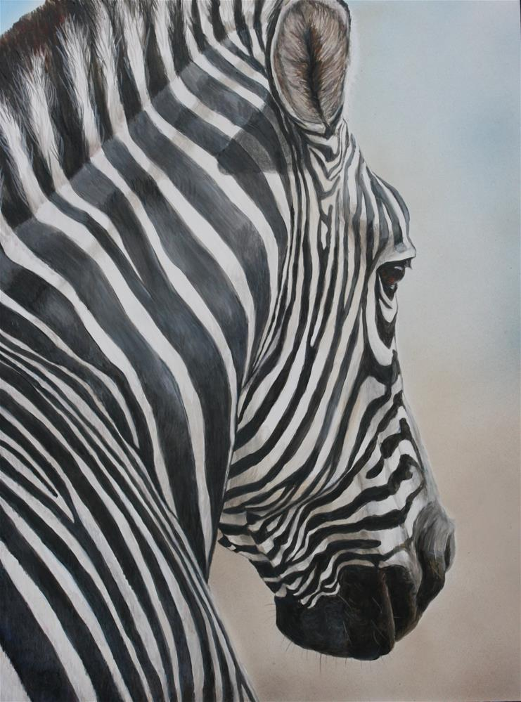 """Zebra Look"" original fine art by Charlotte Yealey"