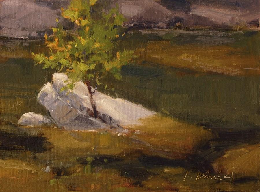 """""""Rocky Creek Light"""" original fine art by Laurel Daniel"""