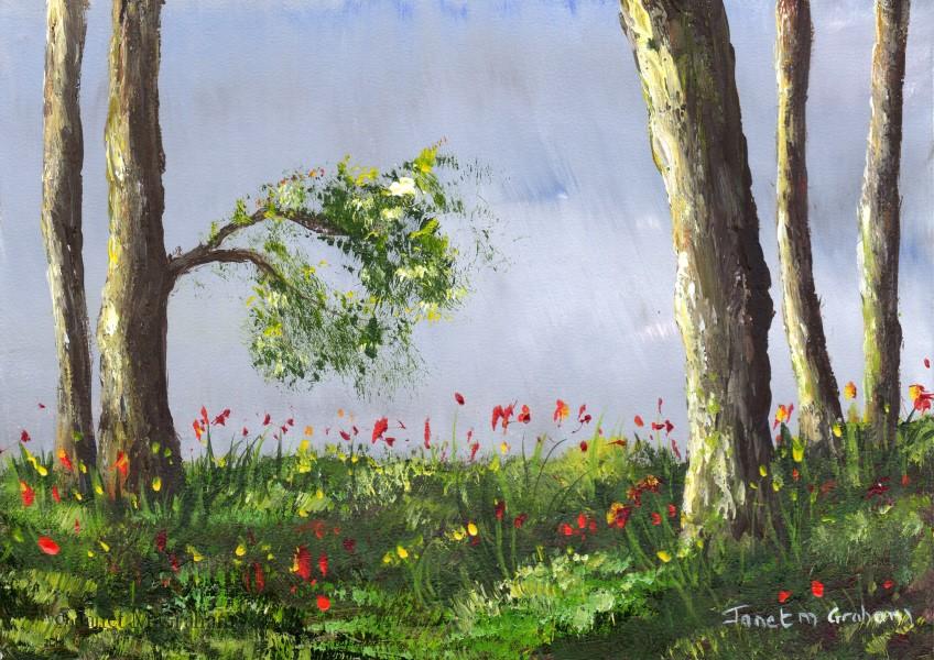 """""""Spring Meadows No 2"""" original fine art by Janet Graham"""
