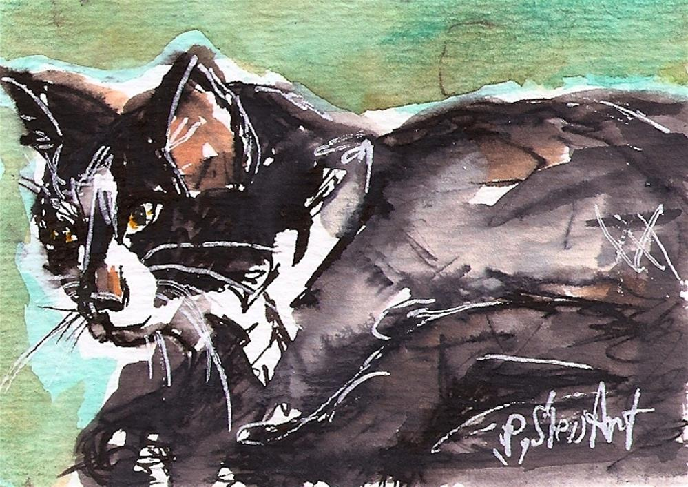 """ACEO Black and White Cat Watercolor, Pen & ink, Original Art, Penny StewArt"" original fine art by Penny Lee StewArt"