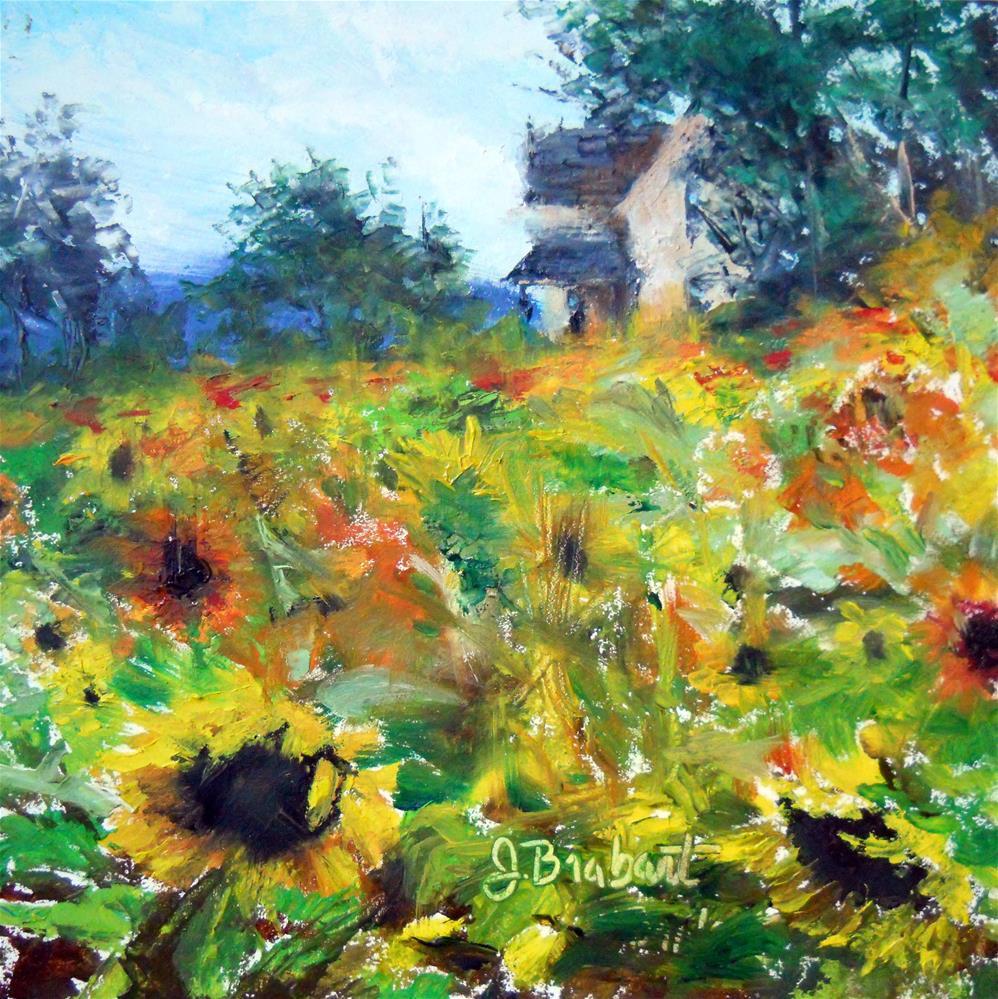 """""""Sunflower Hill"""" original fine art by Jill Brabant"""