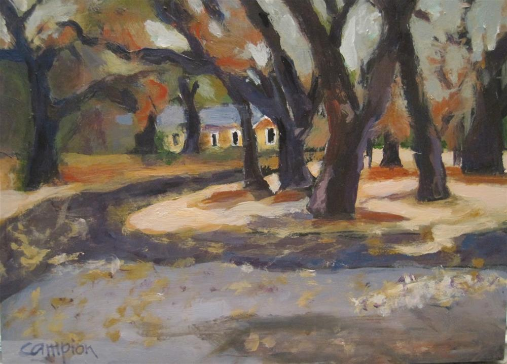 """Circle Drive"" original fine art by Diane Campion"