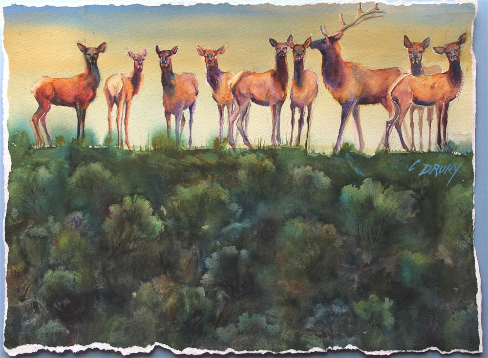 """Elk Ridge"" original fine art by Colleen Drury"