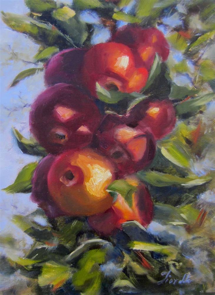 """""""Apples in the Sun"""" original fine art by Pat Fiorello"""
