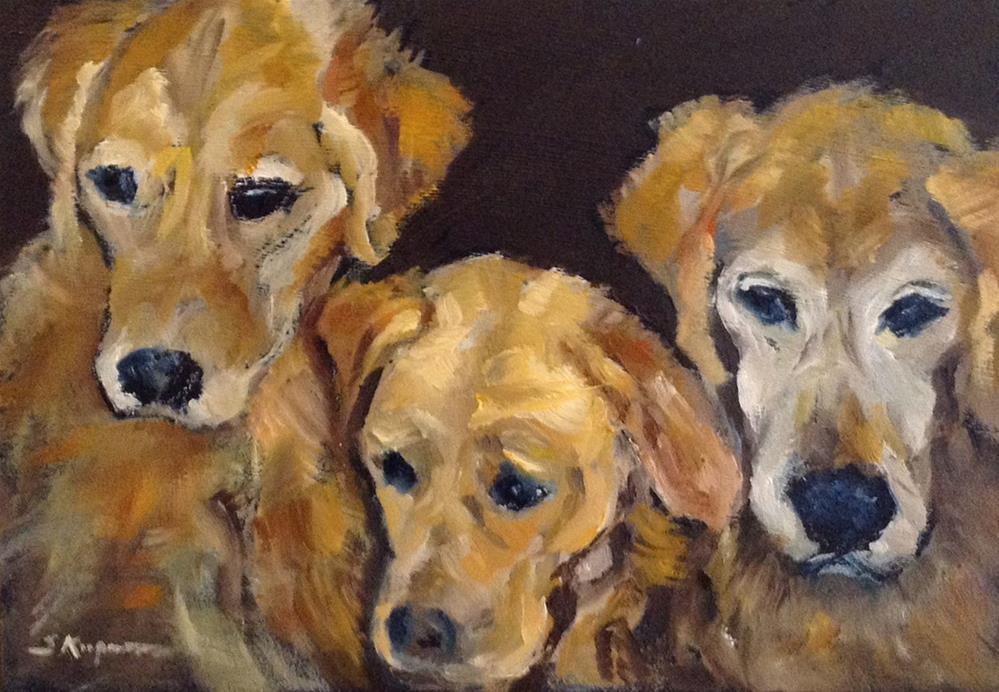"""Three Beauties"" original fine art by Shelley Koopmann"