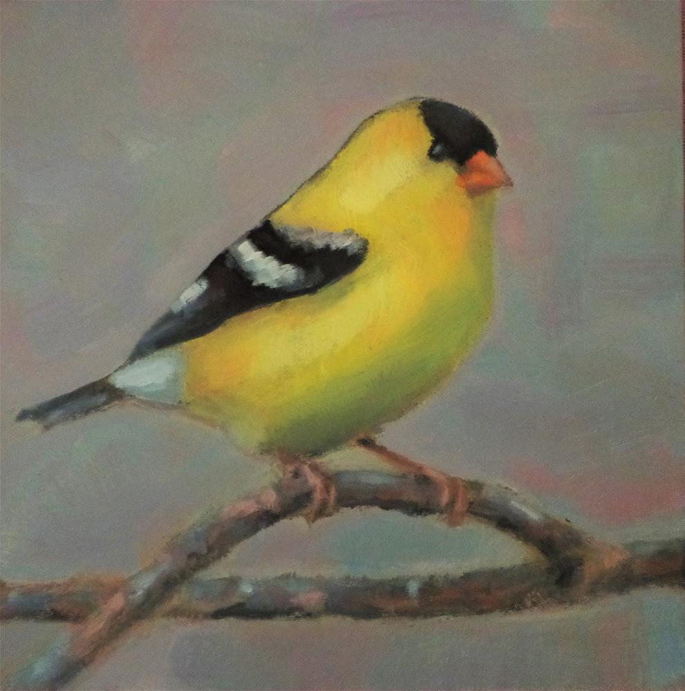"""Goldfinch"" original fine art by Maria Z."