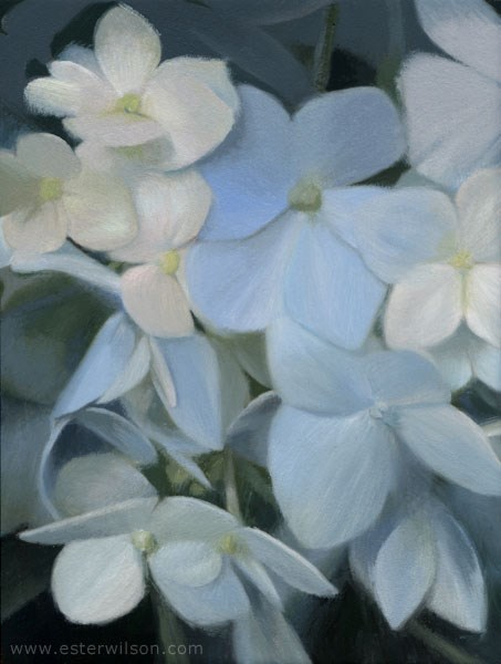 """Blues"" original fine art by Ester Wilson"