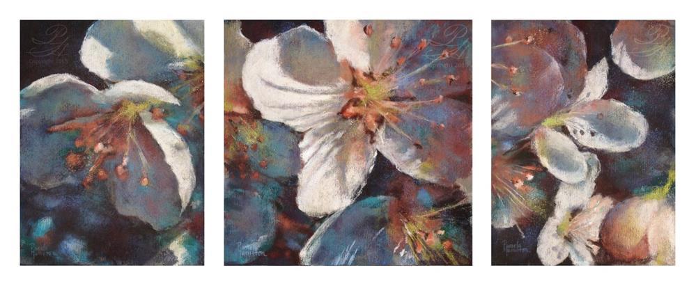 """""""Triptych Blossom 1, 2, & 3"""" original fine art by Pamela Hamilton"""