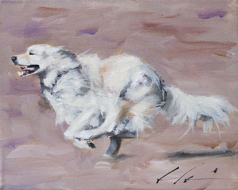 """PAINT MY DOG - Coach"" original fine art by Clair Hartmann"