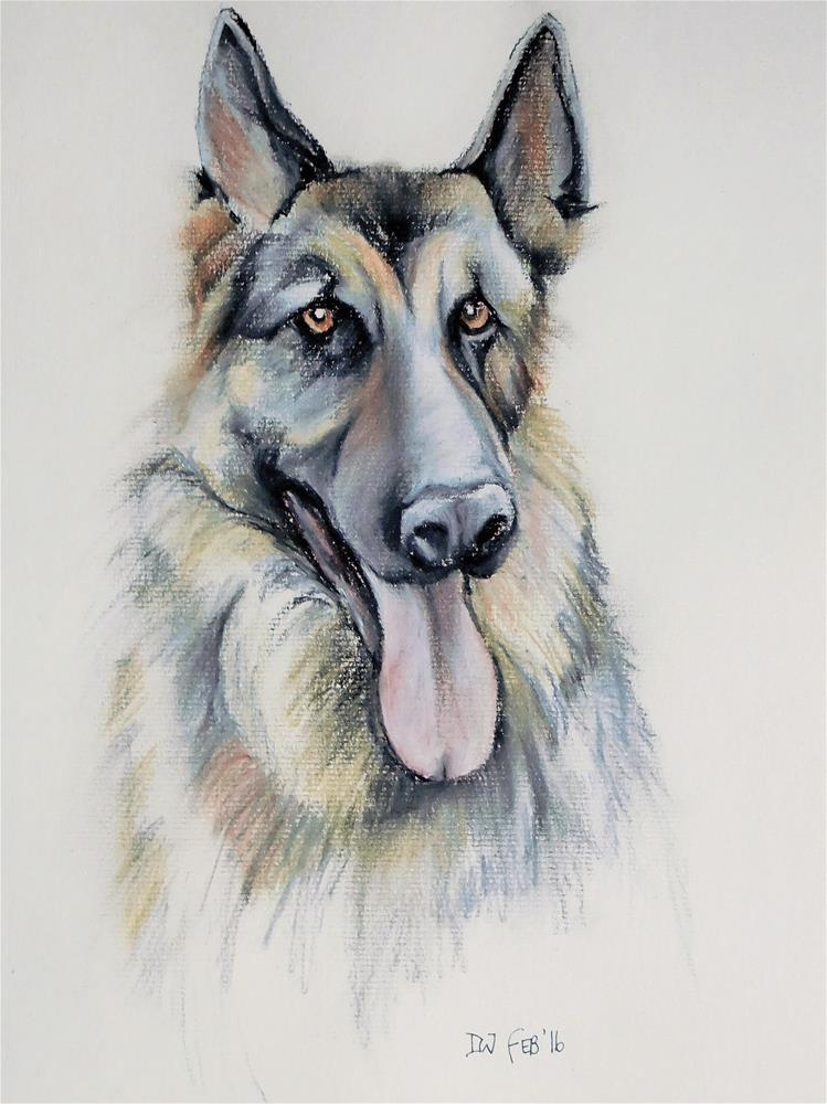 """Alsatian- dog sketch 9"" original fine art by Daryl West"