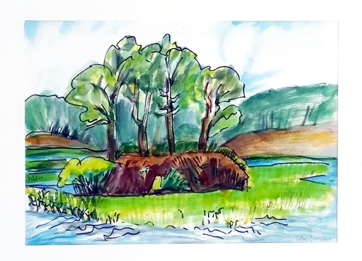 """""""Trees on Bank"""" original fine art by Selby Minner"""