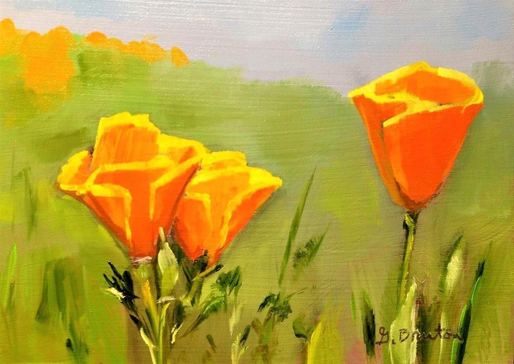 """California Poppies"" original fine art by Gary Bruton"
