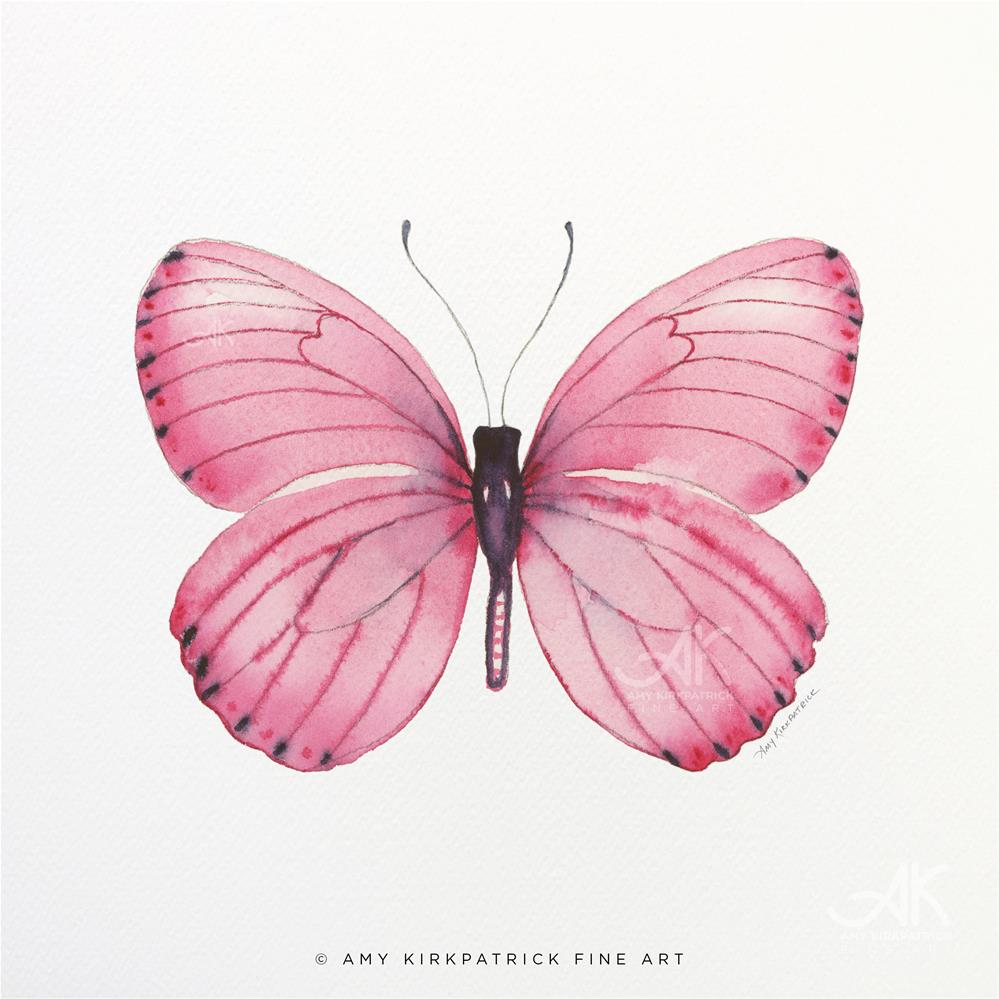 """#106 Pink Marcia Butterfly #0577"" original fine art by Amy Kirkpatrick"