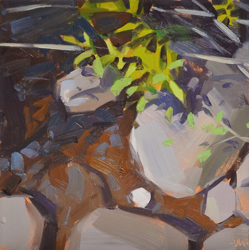 """""""Rocks and Shadows"""" original fine art by Carol Marine"""
