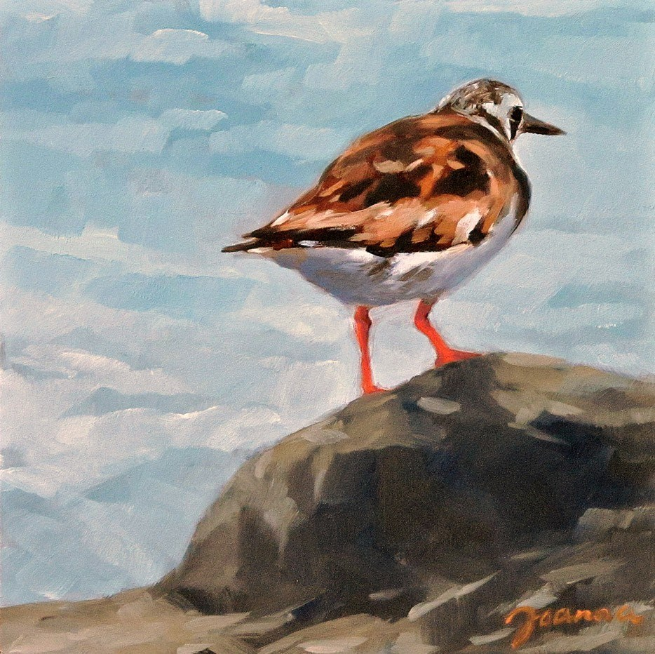 """Sandpiper on the Rock"" original fine art by Joanna Bingham"