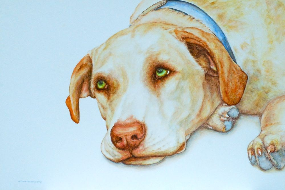 """Billy's I Wuv You Eyes"" original fine art by Vicki Wood"