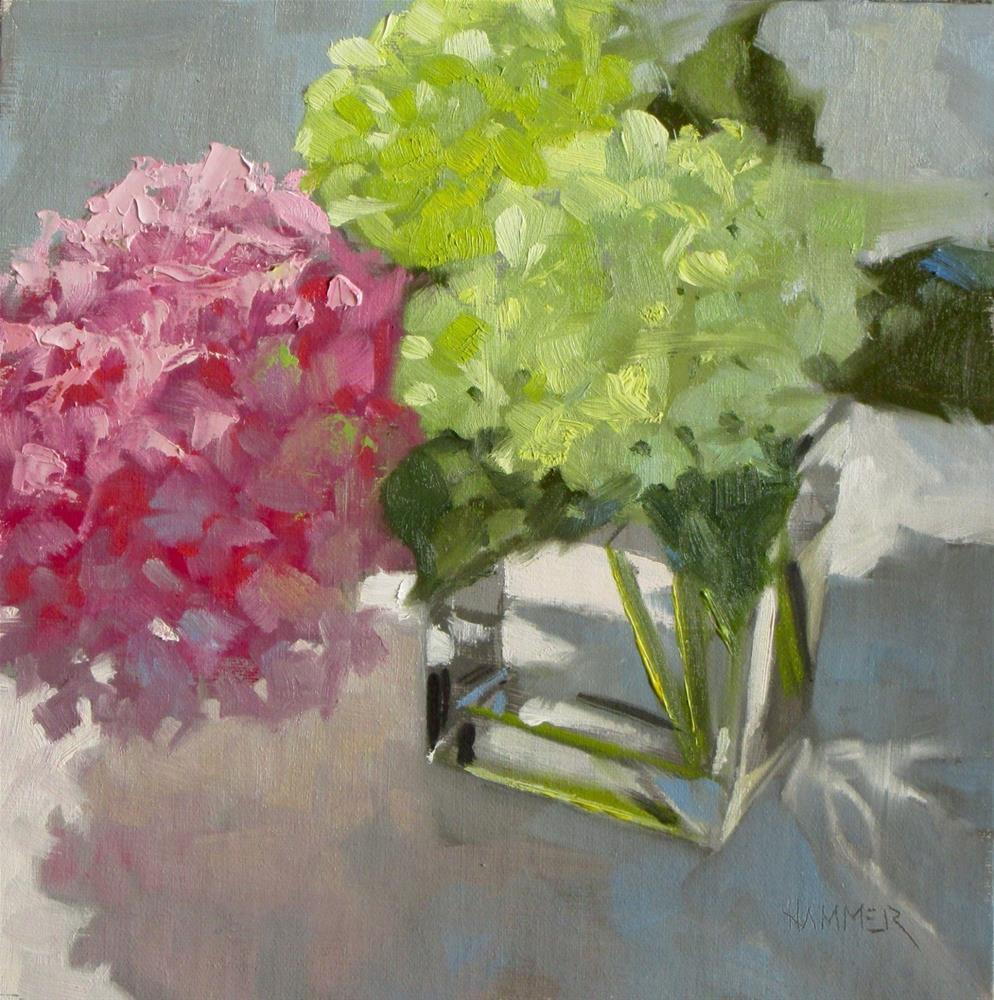 """Pink and Green Hydrangeas  8 x 8  oil"" original fine art by Claudia Hammer"