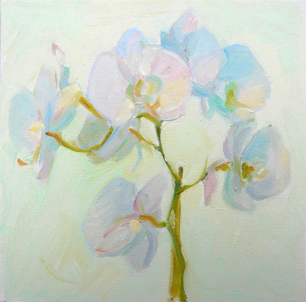 """Orchid,still life,oil on canvas,8x,rice$300"" original fine art by Joy Olney"