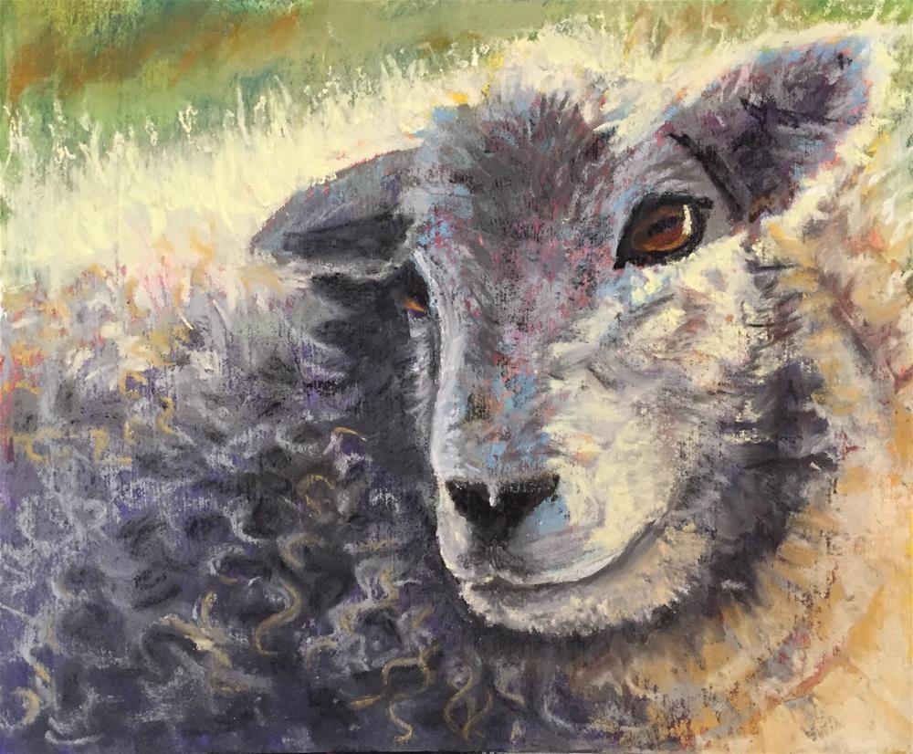 """""""Sheep 2"""" original fine art by Natasha Ramras"""