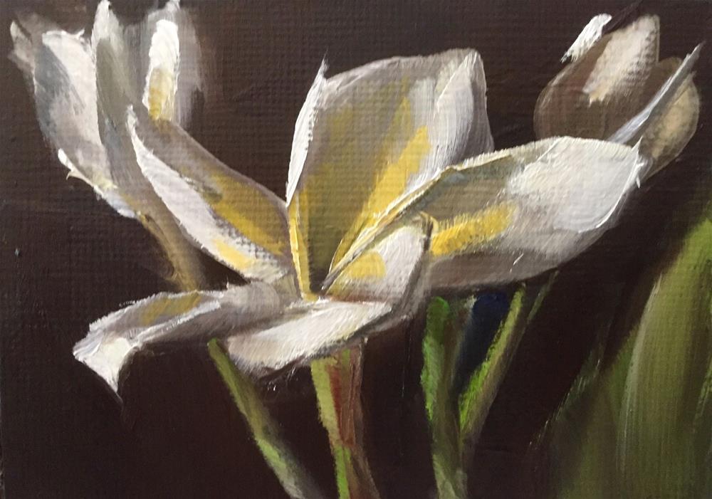 """Plumeria Trio"" original fine art by Gary Bruton"