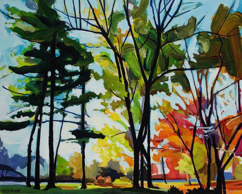 """Autumn Trees, Glen Park"" original fine art by Chris Breier"