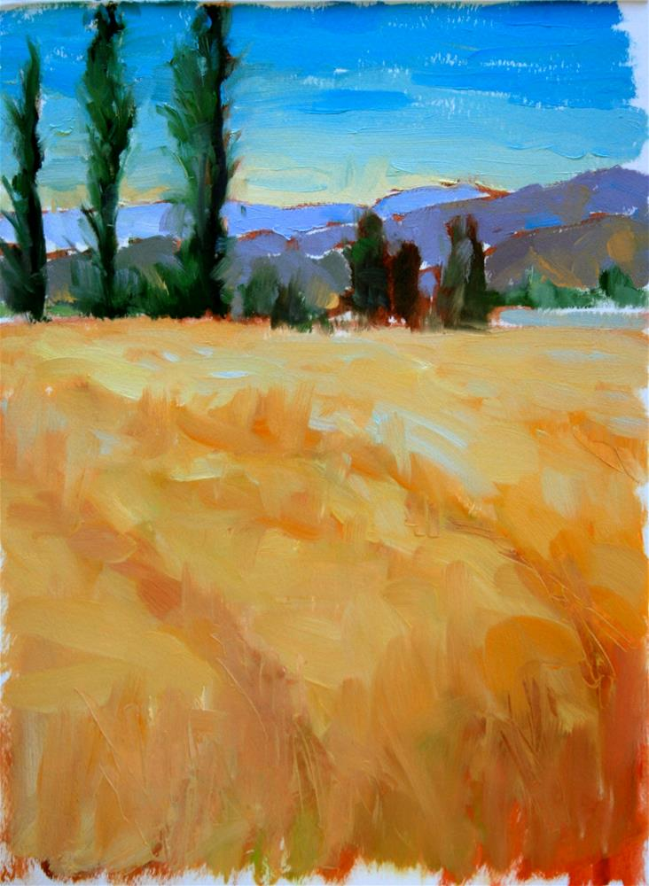 """Study for Chile Cornfields"" original fine art by Jane Robertson"