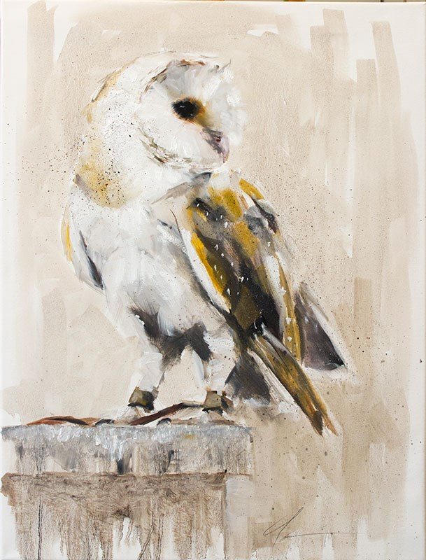 """Barn Owl II"" original fine art by Clair Hartmann"