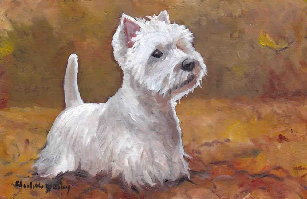 """Westie in the Leaves"" original fine art by Charlotte Yealey"