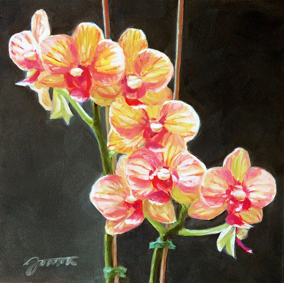 """Blooming Orchid"" original fine art by Joanna Bingham"