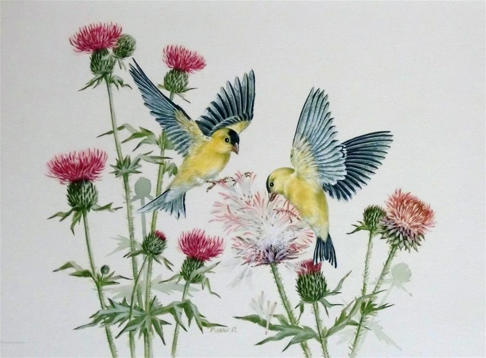 """American Goldfinches"" original fine art by Jean Pierre DeBernay"