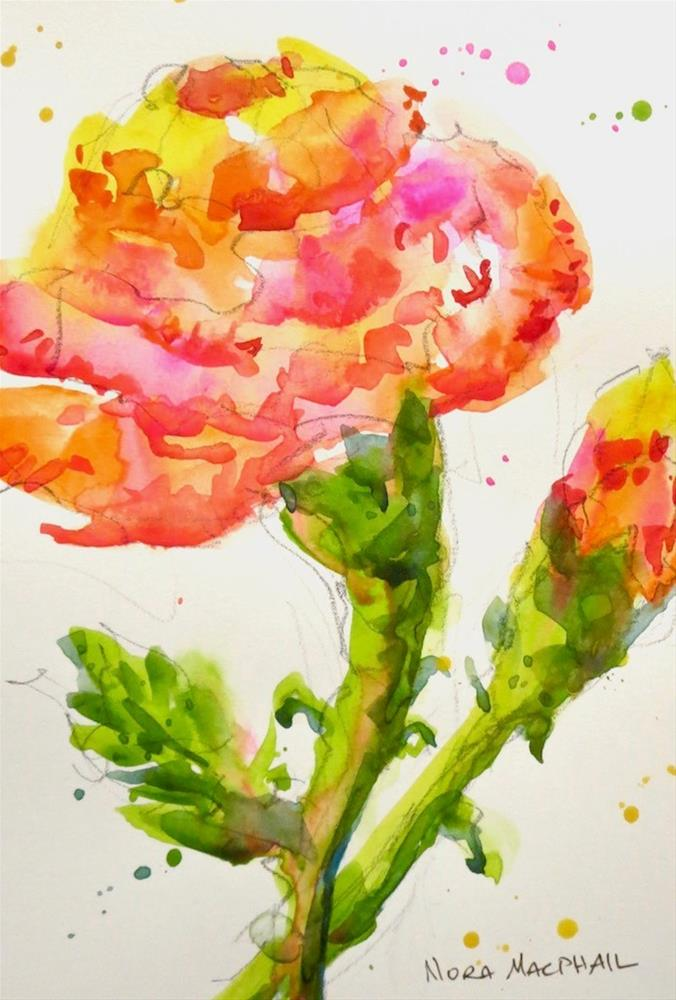 """january's flower - the carnation"" original fine art by Nora MacPhail"