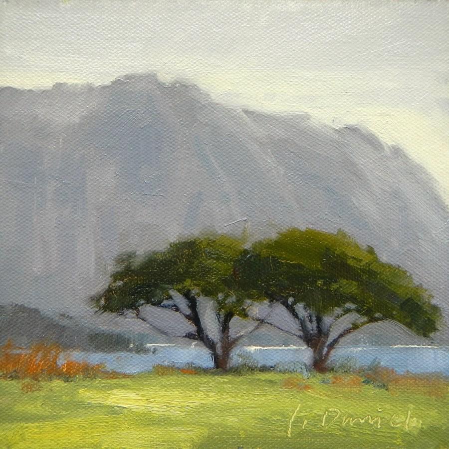 """Monkeypod Canopies - Hawaii"" original fine art by Laurel Daniel"