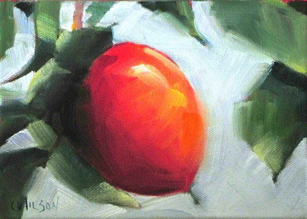 """Sutter Persimmon"" original fine art by Cheryl Wilson"