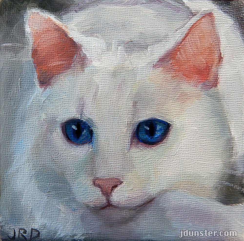 """Pink Nose - White Kitty"" original fine art by J. Dunster"
