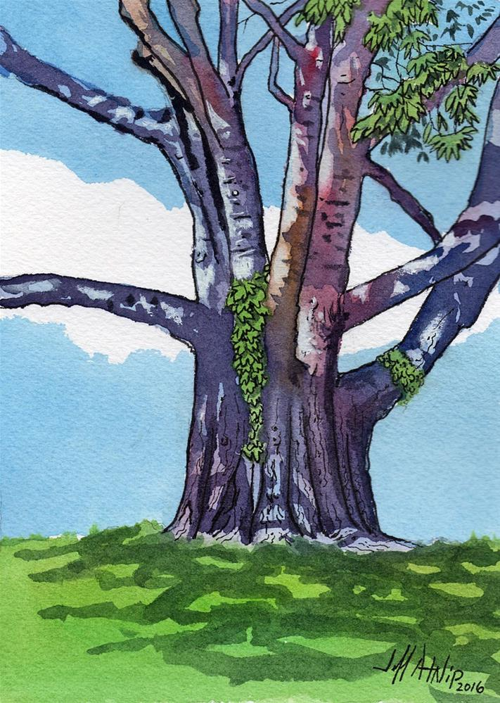 """Hackberry No. 3"" original fine art by Jeff Atnip"