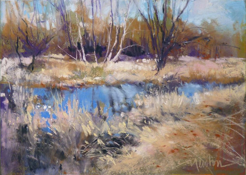"""Spring Light, Winter Shade"" original fine art by Barbara Benedetti Newton"