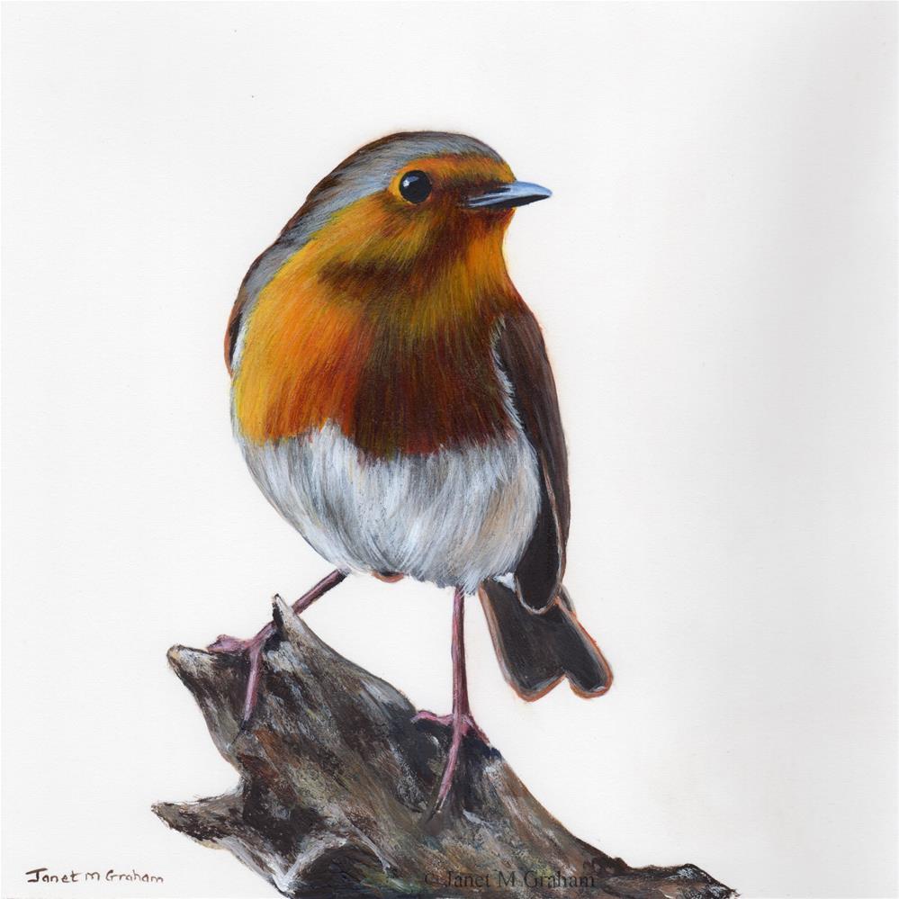 """Robin No 10"" original fine art by Janet Graham"