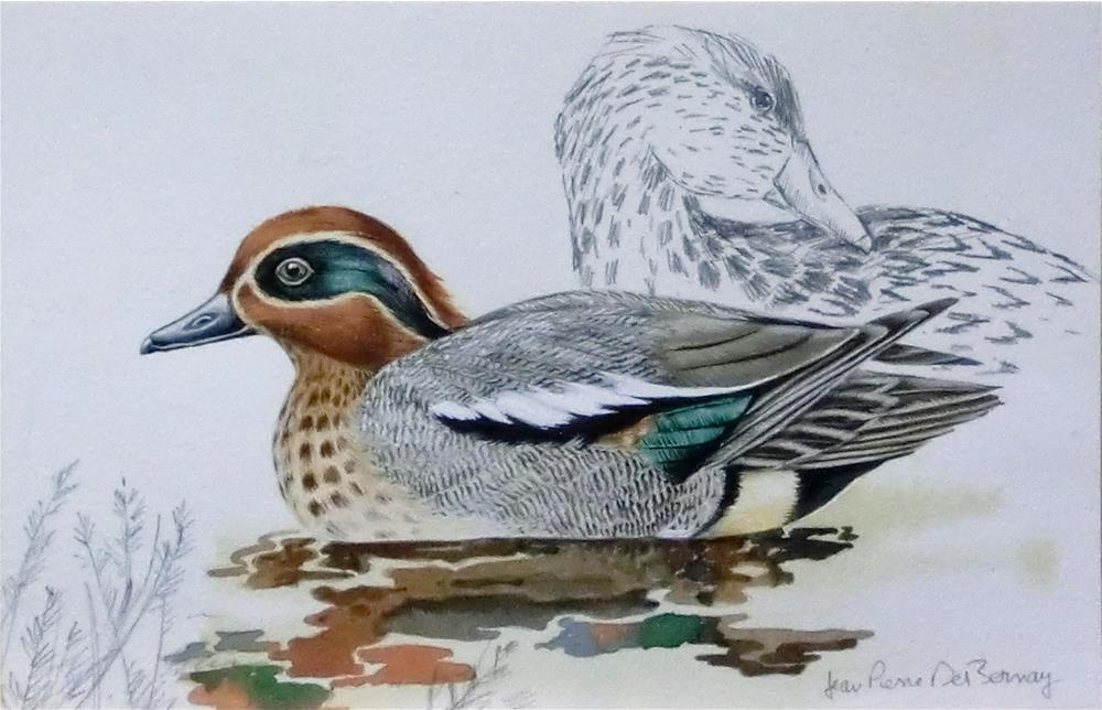 """Green-Winged Teal"" original fine art by Jean Pierre DeBernay"
