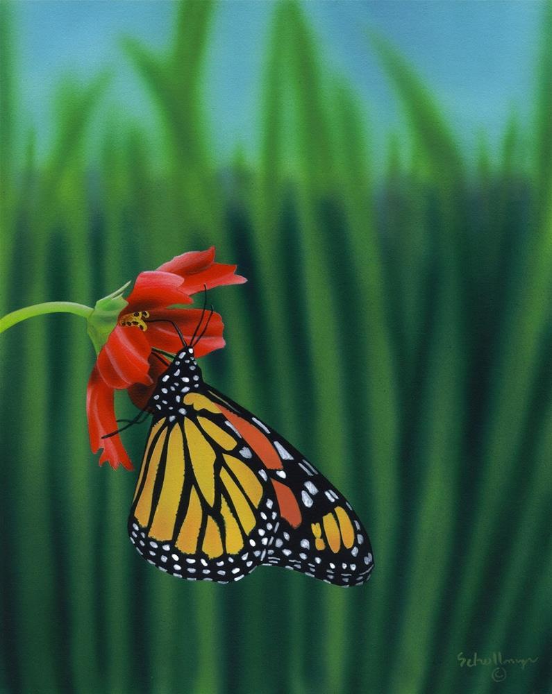 """""""Butterfly Breaktime"""" original fine art by Fred Schollmeyer"""