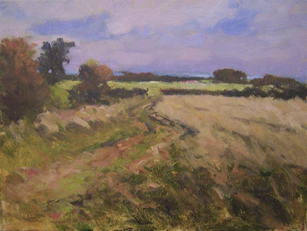 """Summer Fields- East Sussex"" original fine art by John Shave"