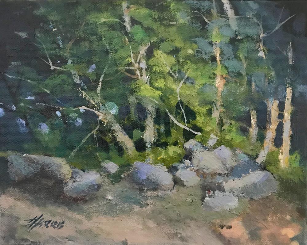"""CampSite"" original fine art by Helen Harris"