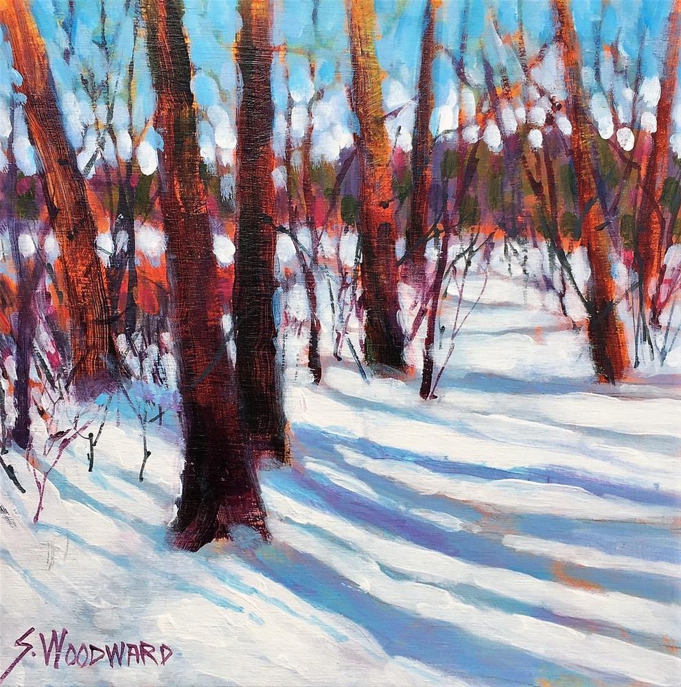 """Shawdows On Snow"" original fine art by Suzanne Woodward"